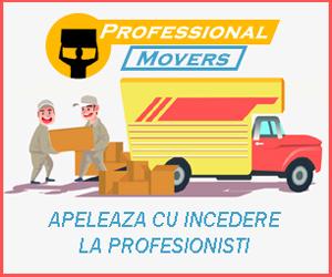 transport mobilier brasov